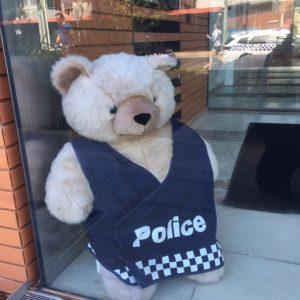 Bear Hunt Sandringham Police Station